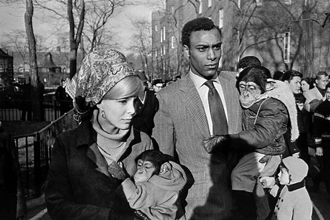 Gary Winogrand Central Park Zoo