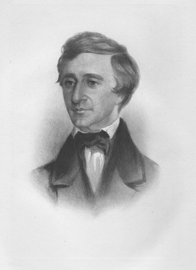 Crayon portrait of Henry David Thoreau