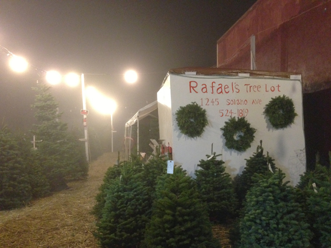 Rafaels_Tree_Lot